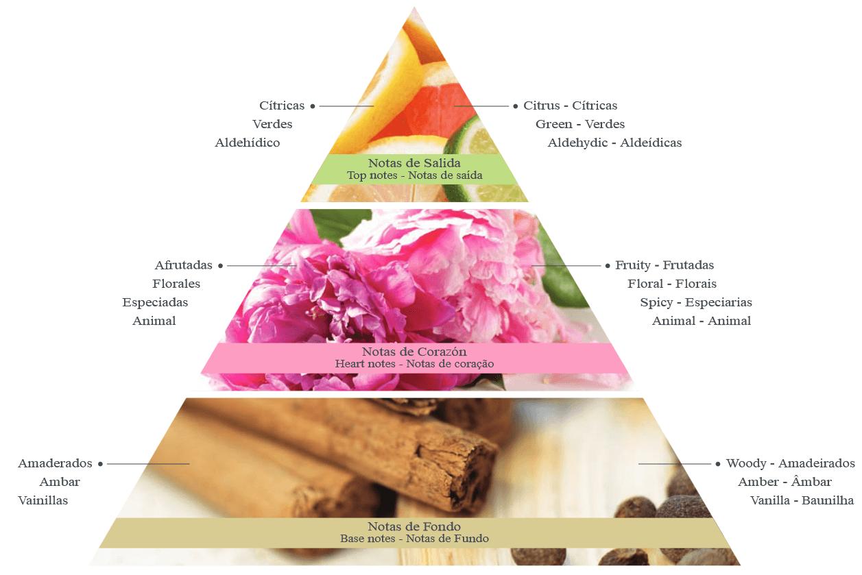 Piramide Olfativa de Prouvé