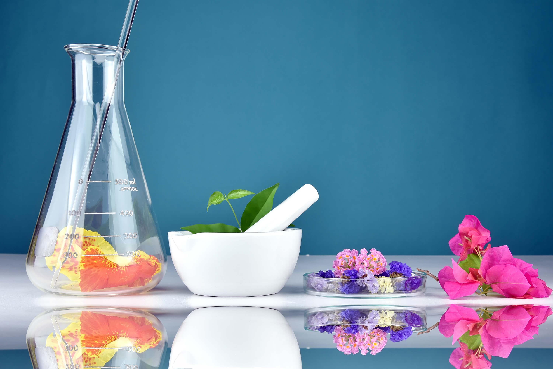 Qué es la arquitectura de la fragancia de los perfumes prouvé
